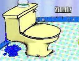 Leaky toilet